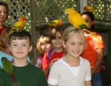 Parrot Mountain & Gardens