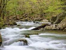 Describing Four Areas of the Smoky Mountains for Your Vacation